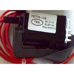 PET19-18B