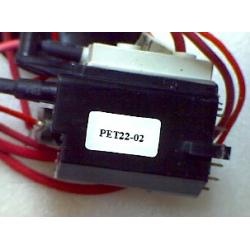 PET22-02
